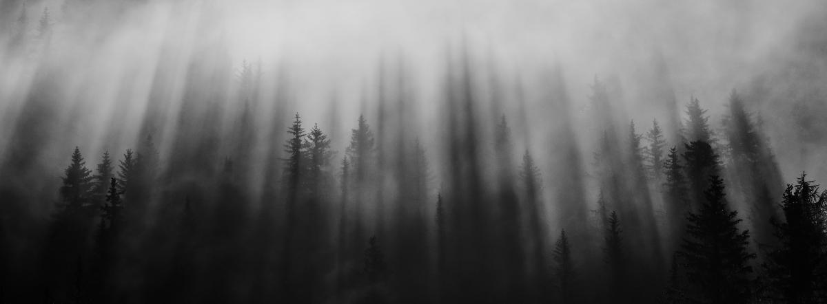 У чудовищ нет голоса - мистика, нерождённые, дети, смерть, загробный мир
