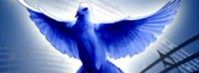 Годы - птицы синие