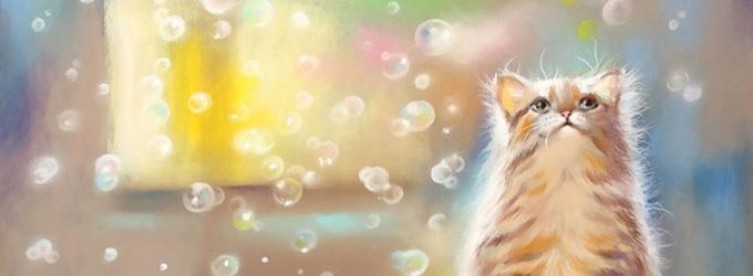 Как котёнок солнышко ловил