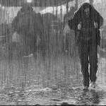В дождь - играет ночь на саксофоне дождя! (1995 г.)