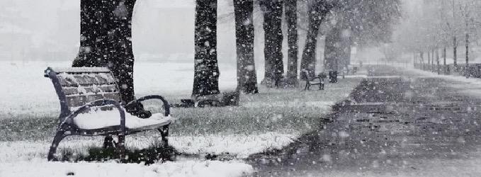 Бродяга-снег