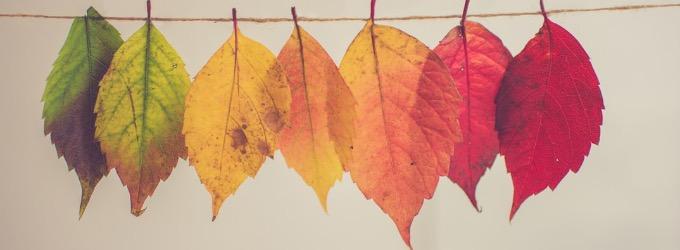 Близится осень