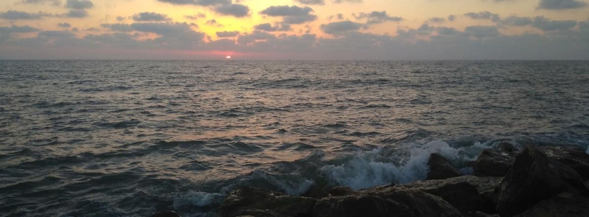Знаешь, море, я так скучала...