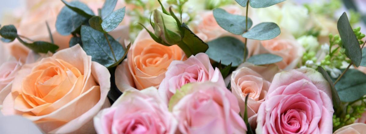 Цветы для Элджернона краткое содержание