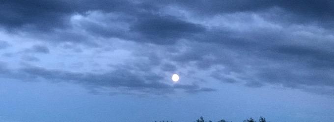 «Лунный сонет»