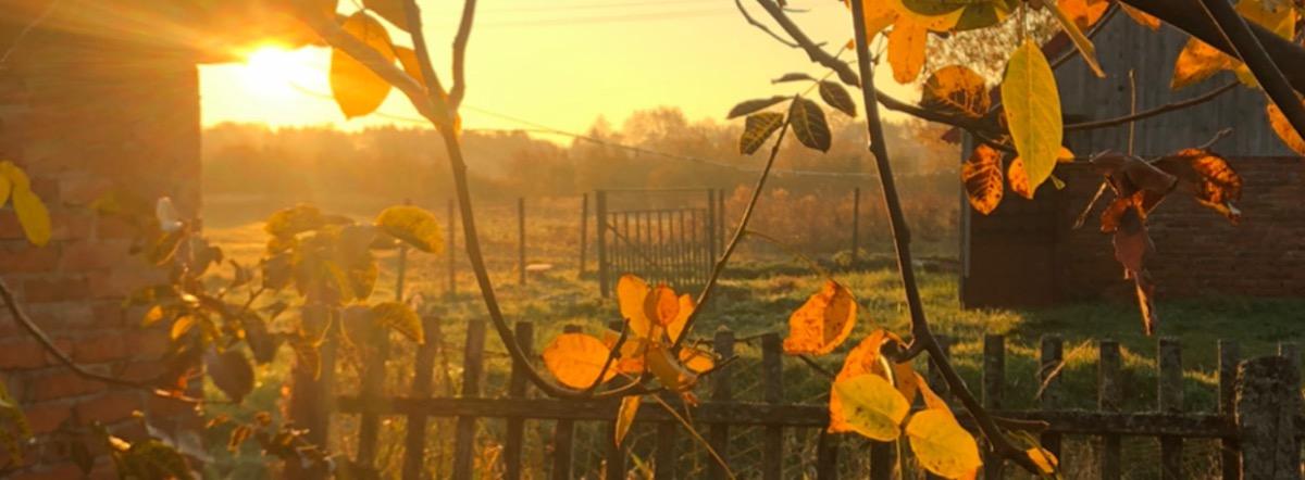 «Осеннее»