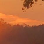«Осенняя ночь»