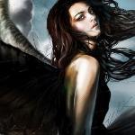Серые крылья