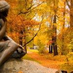 Желтая осень