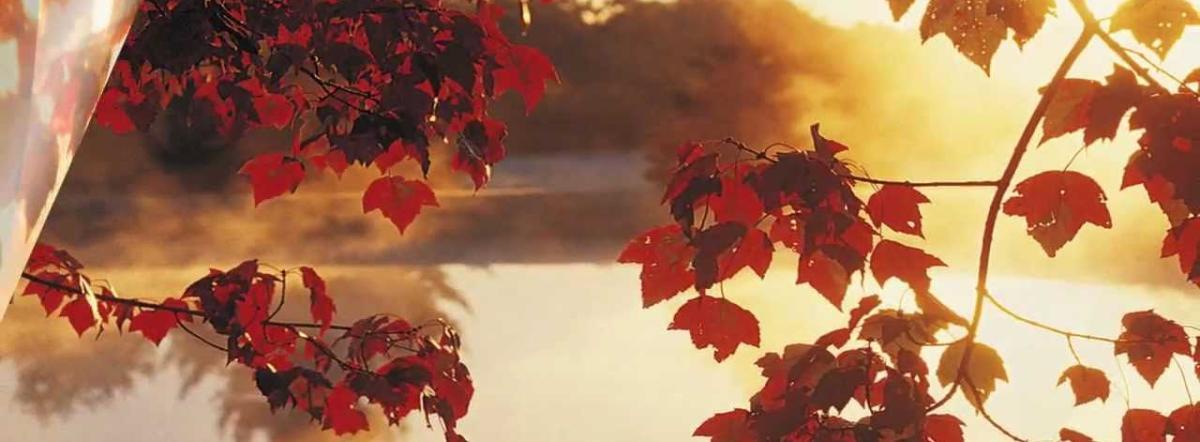 Ode To Autumn - ode, autumn