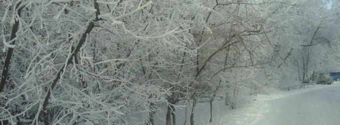 Накрывает январь белым шёлком - современнаяпоэзия, аннамирюк
