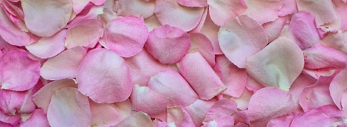 Розовый асфальт - пейзажная лирика, о жизни