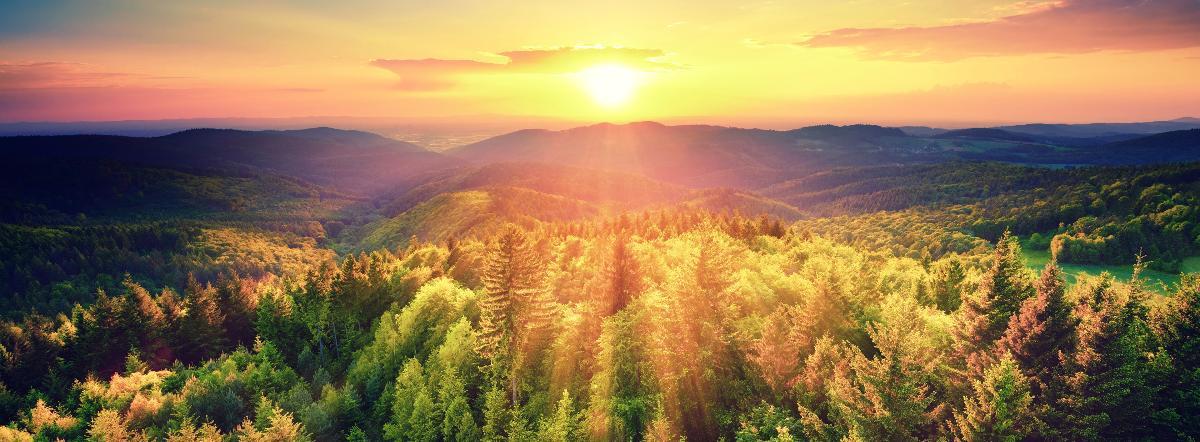 Что красивее всего - стихи для детей, природа, красота