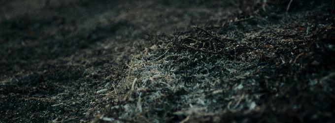 Пепел на песке