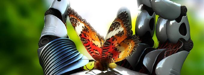Бабочка и терминатор