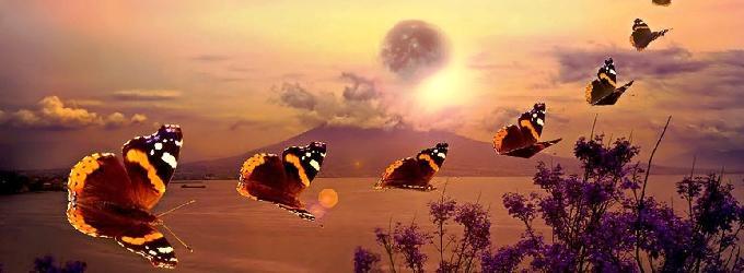 Бабочки летят на свет - бог, душа, огонь, свет, деньпоэзии