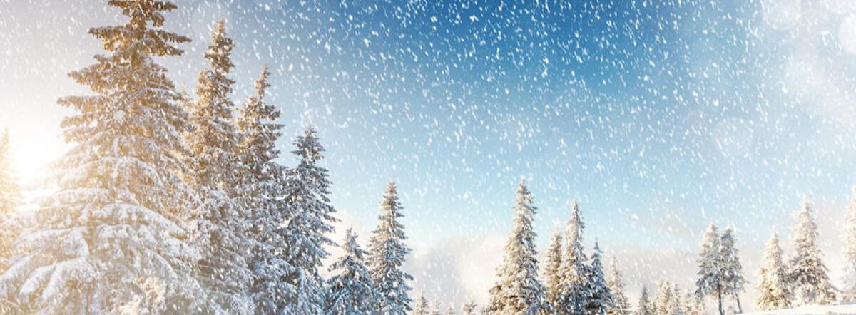 Snow-Bound - snow