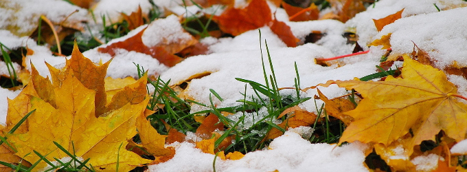 Осень - верлибр