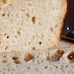 Хлеб для собаки краткое содержание