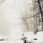 За окнами беззвучно падал снег