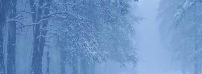 О зиме