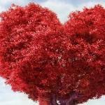 Любимы будьте и любите