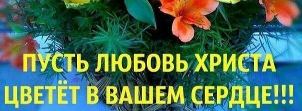 излечит всё любовь от 19. 06. 2013