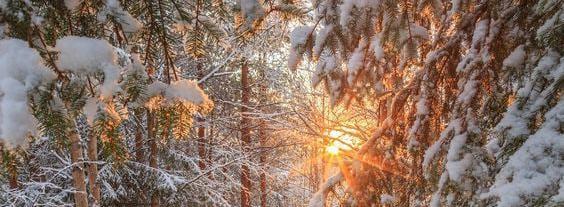 Красавица зима от 29. 01. 2014