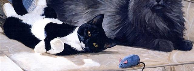 Глупые кошки
