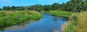 Моя река...
