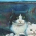 Ворчливая Кошка