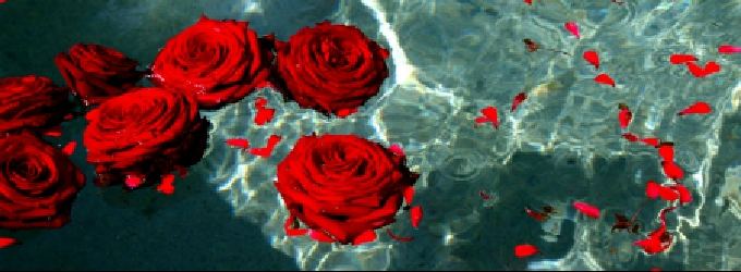 Роберт Бёрнс - Red Red Rose - мой перевод - переводы